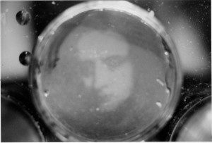 Image of Newton in Petri dish.jpg (428 KB)